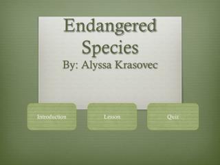 Endangered Species By: Alyssa Krasovec