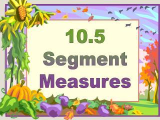 10.5 Segment Measures