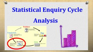 Statistical Enquiry Cycle Analysis