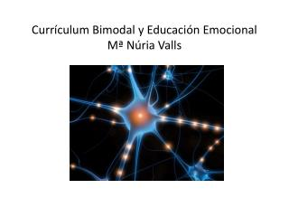 Currículum Bimodal y Educación Emocional Mª Núria Valls