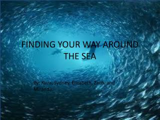 FINDING YOUR WAY AROUND THE SEA