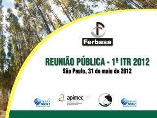 RESULTADOS FINANCEIROS FATO RELEVANTE PERSPECTIVAS FeCr FeSi CAPEX  2012