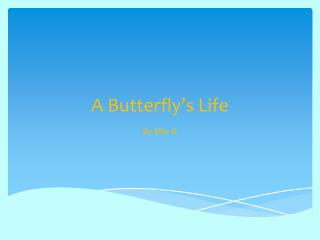 A Butterfly's  L ife