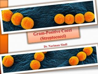 Gram-Positive Cocci (Streptococci)