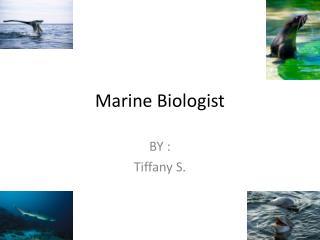 M arine Biologist