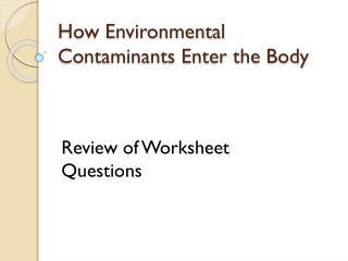 How Environmental Contaminants Enter the Body