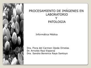 PROCESAMIENTO DE IM GENES EN  LABORATORIO Y  PATOLOGIA
