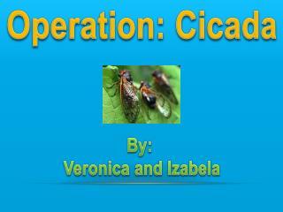Operation: Cicada