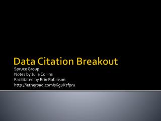 Data Citation Breakout