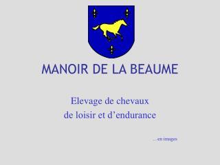 MANOIR DE LA BEAUME