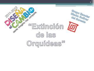 """""""Extinción de las  Orquídeas"""""""