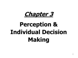 Chapter 3 Perception & Individual Decision Making
