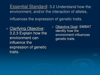 Objective Goal : SWBAT identify how the environment influences genetic traits
