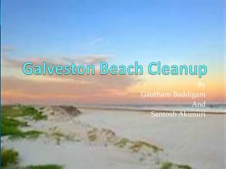 Galveston Beach Cleanup
