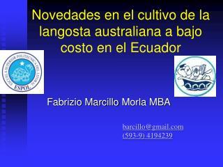 Novedades en el cultivo de la langosta australiana a bajo costo en el Ecuador
