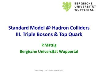 Standard Model @  Hadron Colliders III. Triple  Bosons  & Top Quark