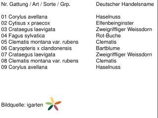 Nr. Gattung / Art / Sorte /  Grp .  Deutscher Handelsname 01  Corylus avellana Haselnuss