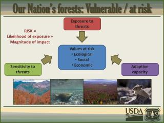 Our Nation�s forests: Vulnerable / at risk