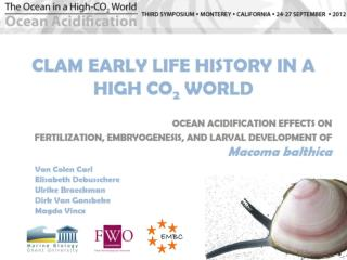 CLAM EARLY LIFE HISTORY IN A HIGH CO 2  WORLD