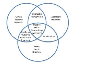 Clinical Research Networks