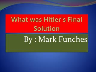 What was Hitler's  Final   Solution
