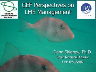 GEF Perspectives on  LME Management