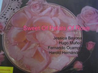 Sweet Of Petals Of Rose