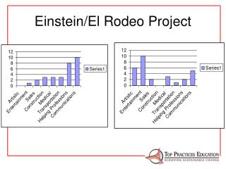 Einstein/El Rodeo Project
