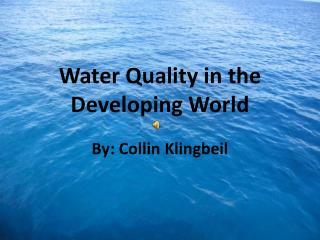Water Quality in the Developing World