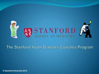 The Stanford Youth Diabetes Coaches Program