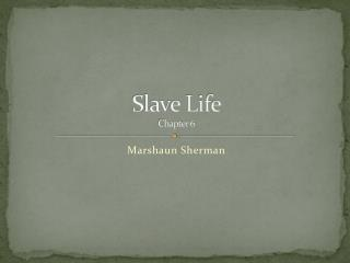 Slave Life Chapter 6