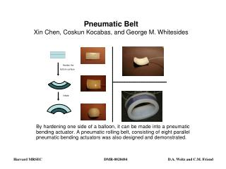 Pneumatic Belt Xin Chen, Coskun Kocabas, and George M. Whitesides