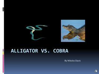 Alligator vs. cobra