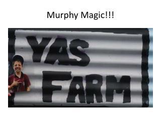 Murphy Magic!!!