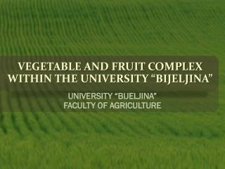 """VEGETABLE AND FRUIT COMPLEX WITHIN THE UNIVERSITY """"BIJELJINA"""""""