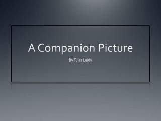 A Companion Picture