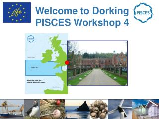 Welcome to Dorking PISCES Workshop 4