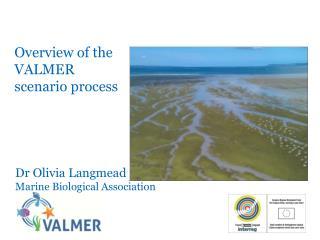 Overview of the VALMER scenario process