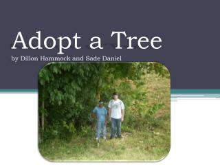 Adopt a Tree by Dillon Hammock and Sade Daniel