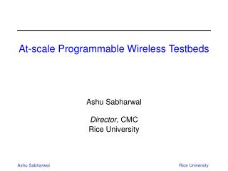At-scale Programmable Wireless Testbeds
