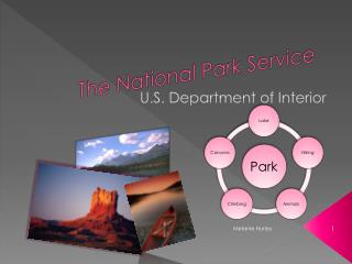 The National Park Service