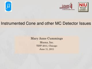 Instrumented Cone and other MC Detector Issues