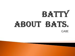 batty about  bats.