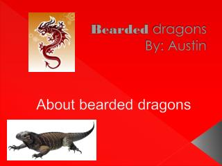 Bearded dragons By: Austin