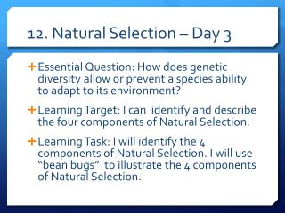12. Natural Selection – Day 3