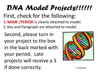 DNA  Model Projects !!!!!!  First, check for the following: