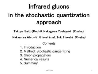 Infrared gluons  in the stochastic quantization approach