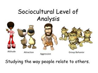 Sociocultural Level of Analysis