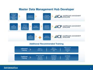 Master Data Management Hub Developer