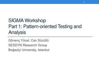 SIGMA Workshop Part 1: Pattern-oriented Testing and Analysis